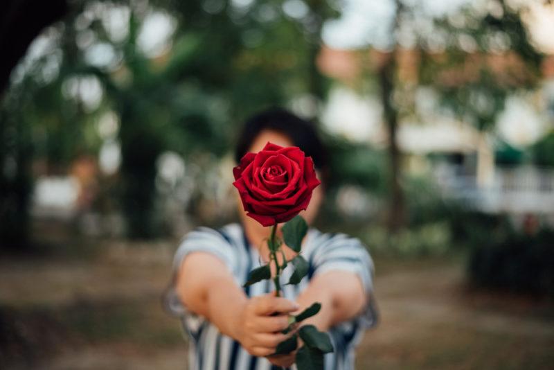 Une rose équitable, c'est quoi ?