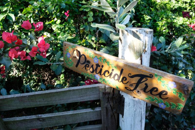 Botanic organise une nouvelle collecte de pesticides