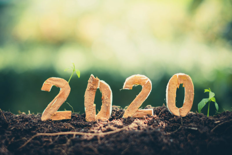 12 bonnes résolutions pour passer une année 2020 plus verte