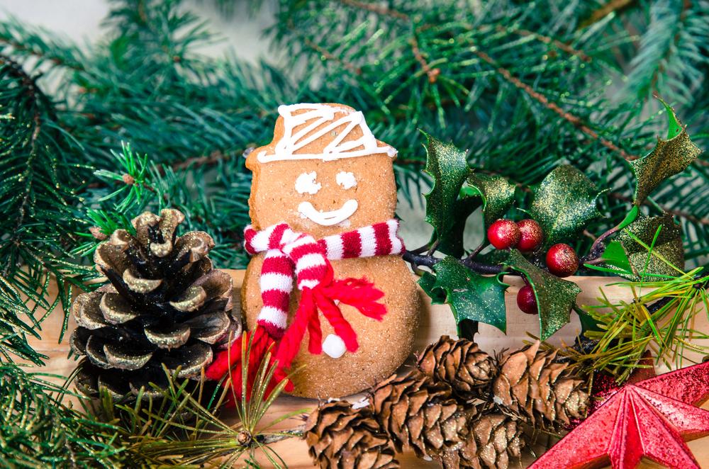 Sapin, cadeaux, repas : nos conseils pour un Noël plus « vert »