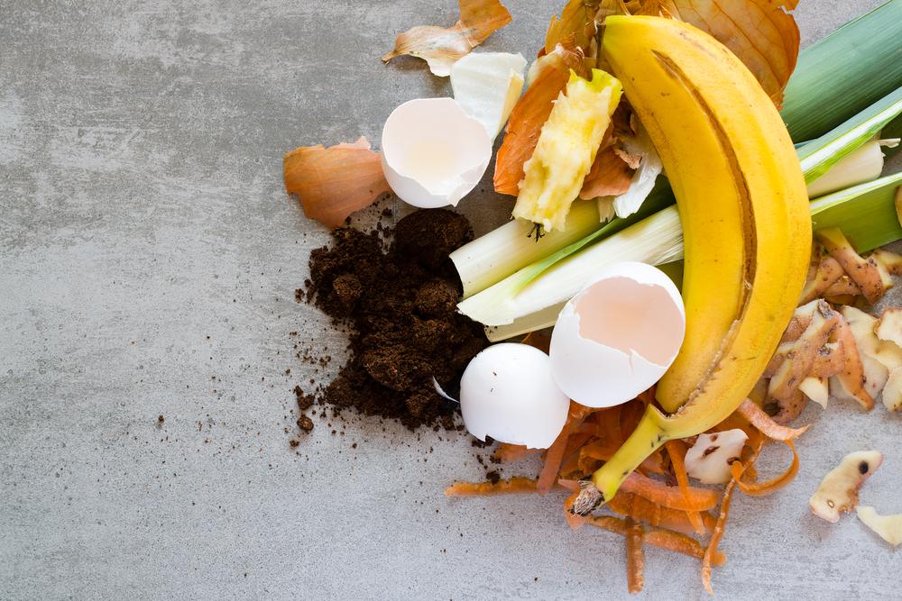 Anti-gaspi : 5 déchets utiles au quotidien