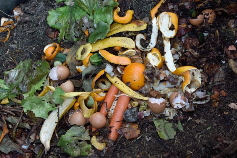 Mayenne : un supermarché transforme ses déchets organiques en compost